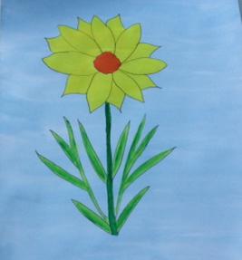 Alison - daffodil