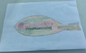 alison - fish