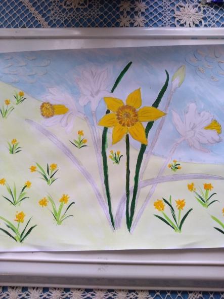 Chrissie daffodils
