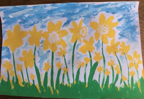 Trish daffodils