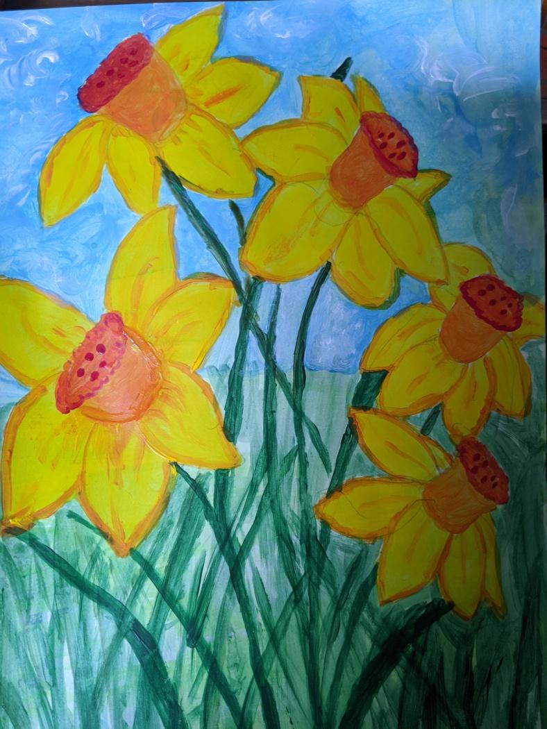 Anne daffodils