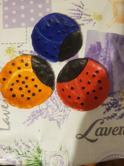 Gemma ladybirds