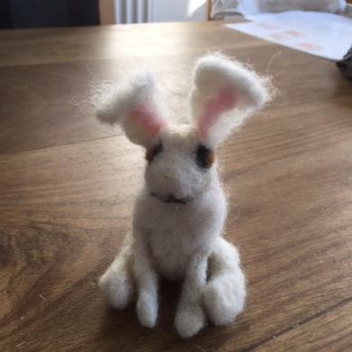 Trish bunny